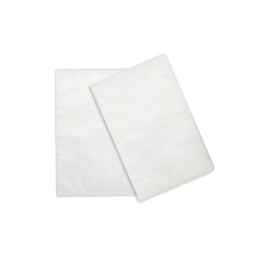 Picture of Airsense 10 and S9 hypoallergenic filters (2/pack) by Resmed
